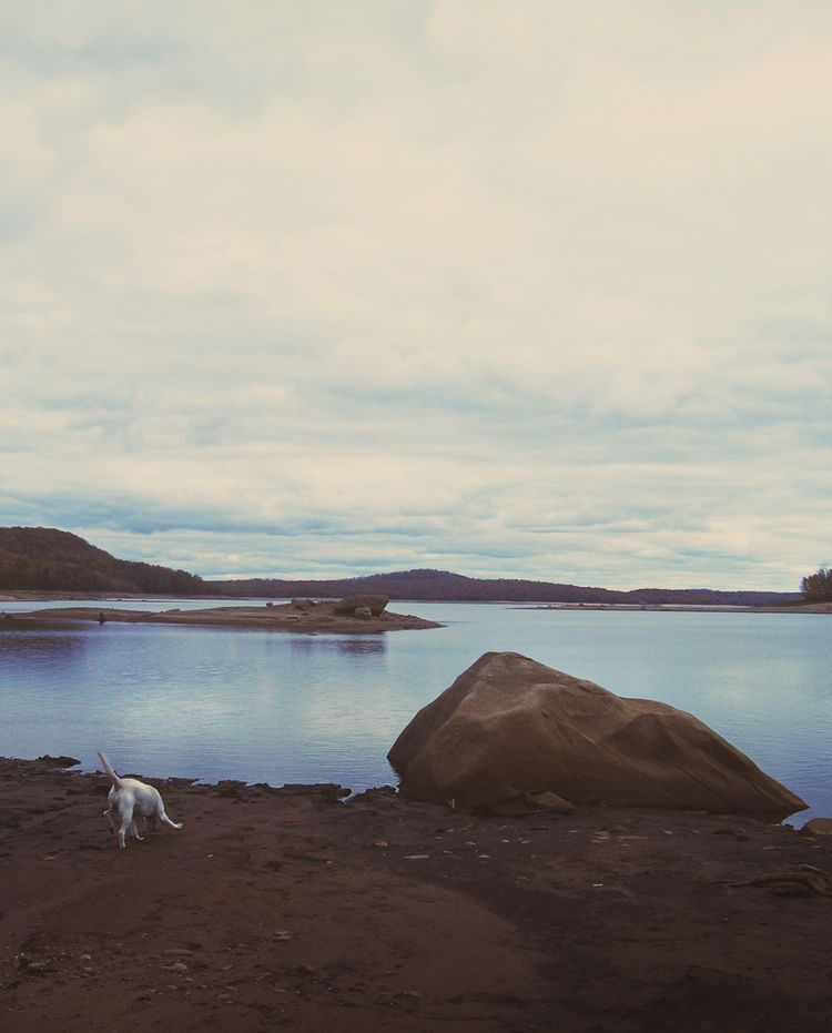 Hike, 2008 - dog, rock, water, adirondacks - mlledarcel | ello
