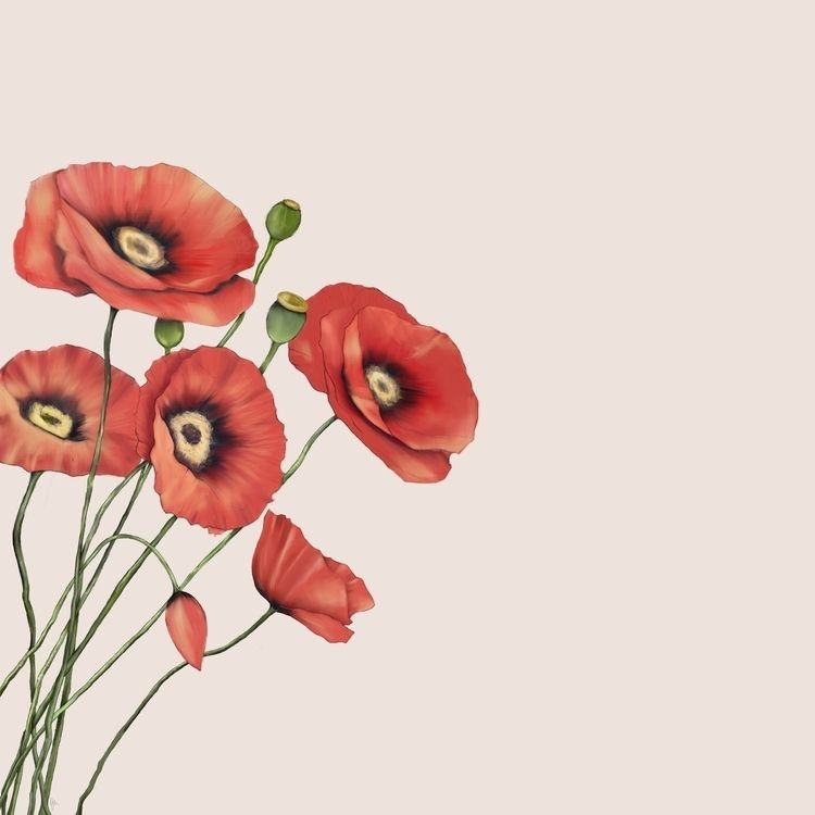 poppies, floral, red, flowers - fickle_muse | ello