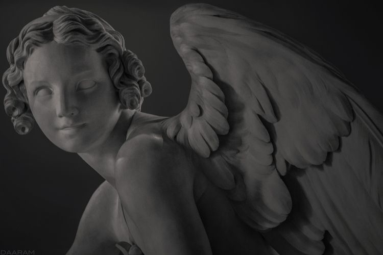 Angel love: Study statue sculpt - daaram | ello