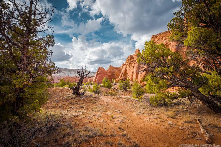 Hiking Kodachrome Basin (Utah)  - viktorelizarov | ello