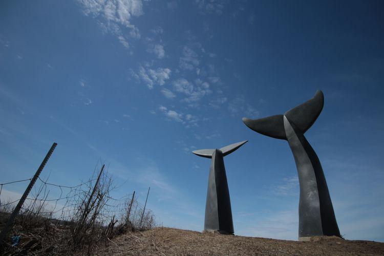 Buried Skyward - whalestails, vermonty - rvee | ello
