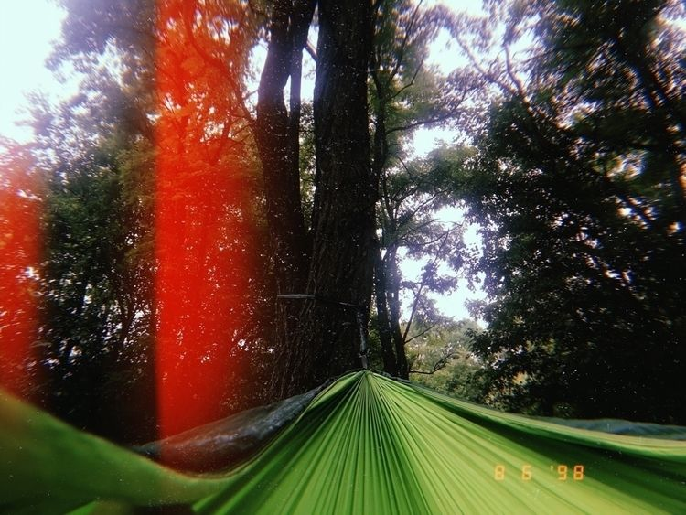 hammock, photography, photo, nature - livsphotos | ello