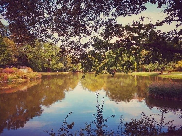 sunday, walk, lake, trees, water - claudio_g_c | ello