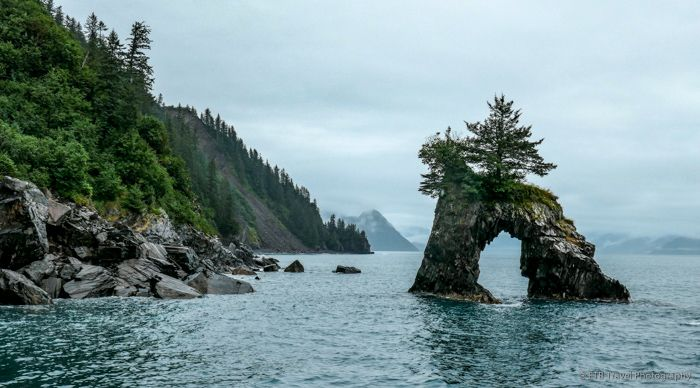 day trip Seward - ocean, cliff, outdoors - etbtravelphotography | ello