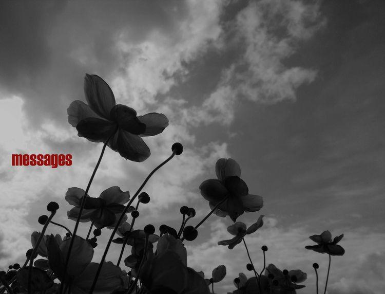 MESSAGES - artphotography, artpoetry - johnhopper | ello
