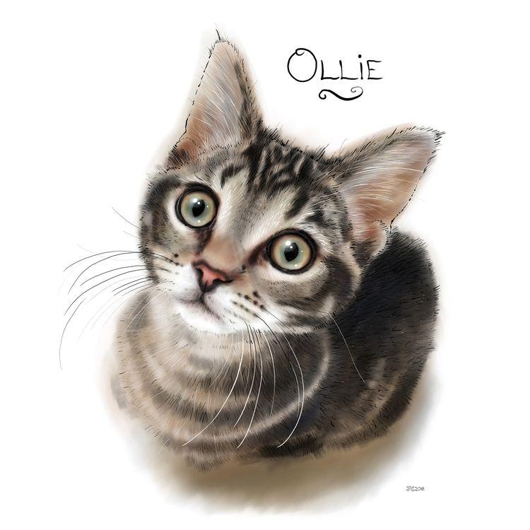 Ollie wee kitten, apparently gr - theanimatedwoman | ello