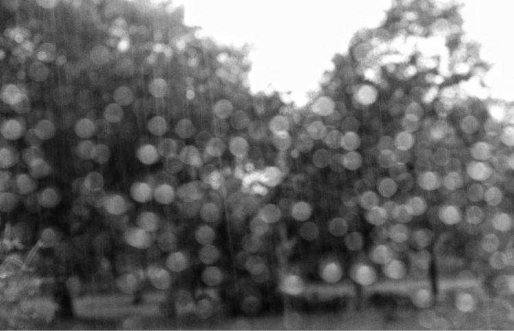 flash flooding rain, Florence e - flaneurity | ello