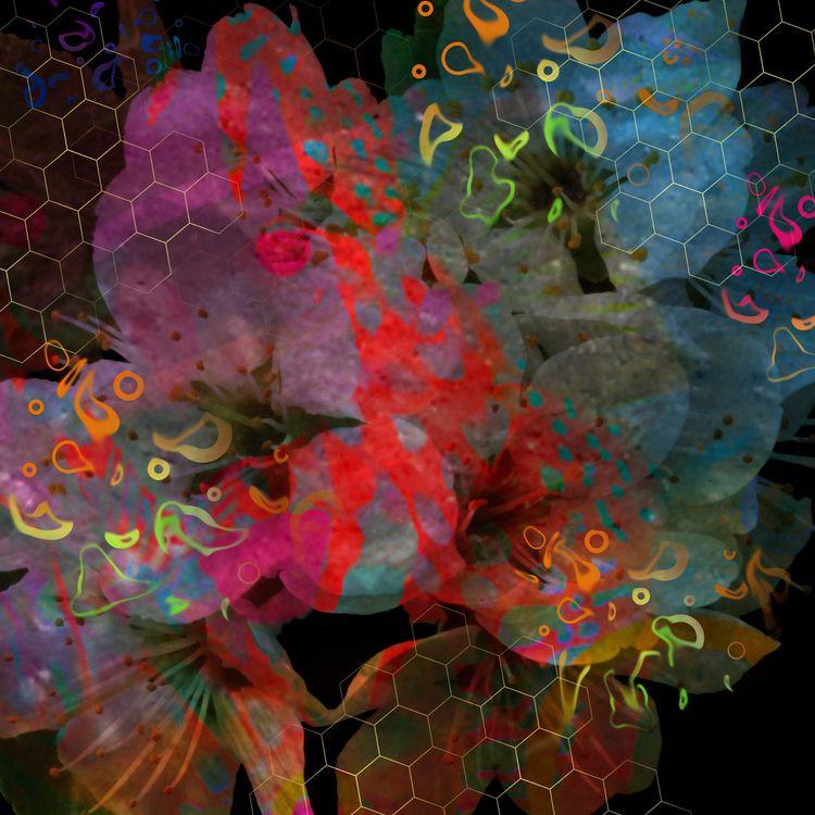 images (Night Flowers) created  - lobber66 | ello
