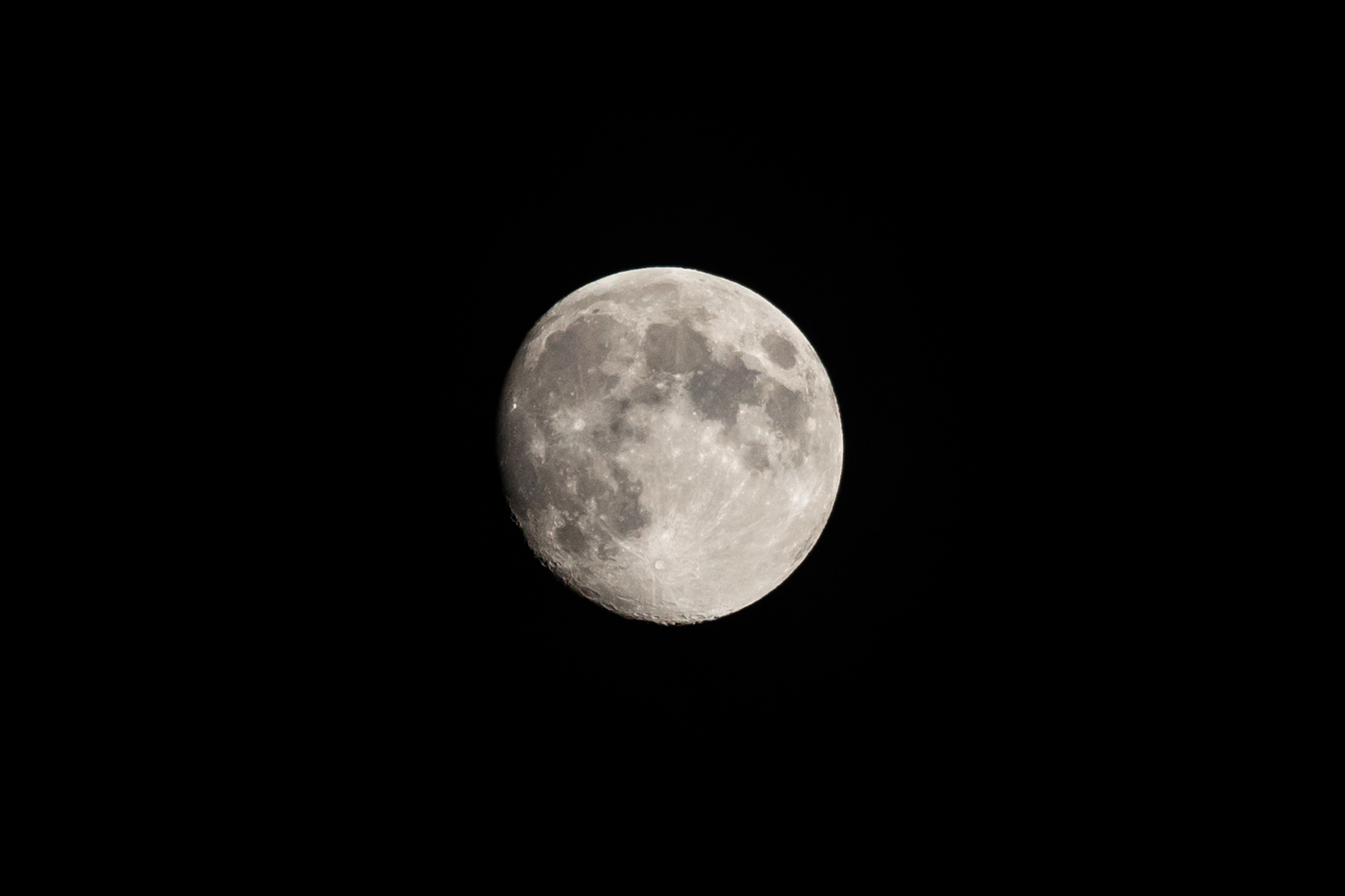 Dear Moon hear, manned lunar fl - jeffmoreau | ello