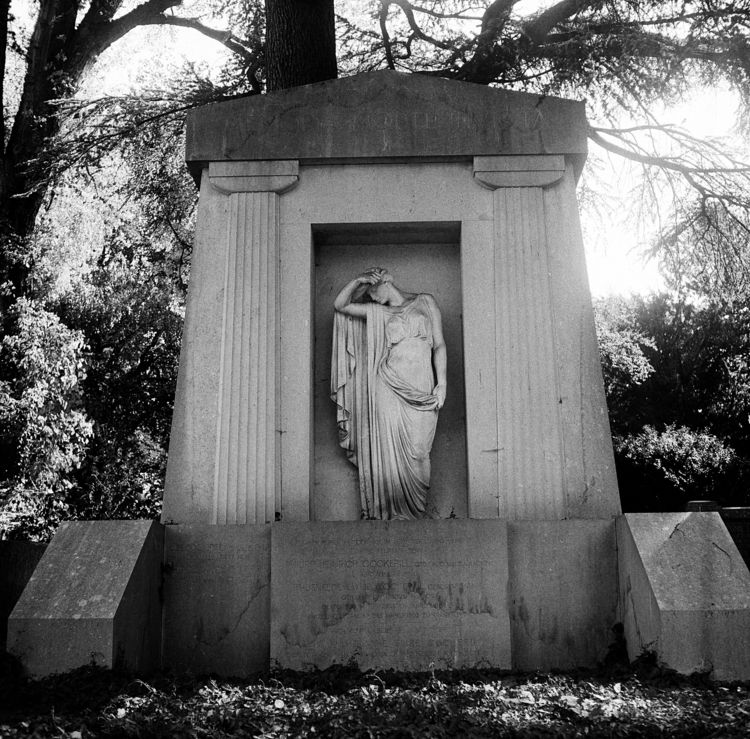 Westfriedhof 1 IX Camera: Yashi - walter_ac | ello