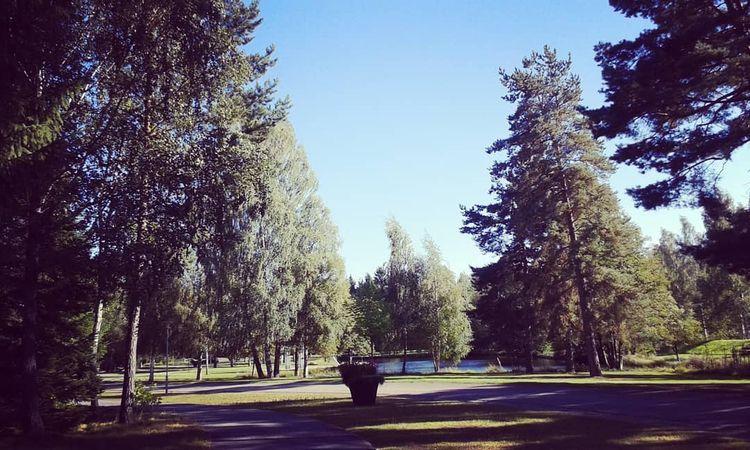 Stora dammen vid vilken Klockst - skogskyrkogardar | ello
