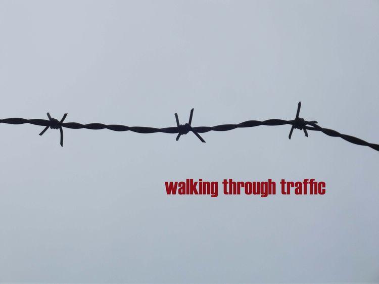 WALKING TRAFFIC - biography, fiction - johnhopper | ello