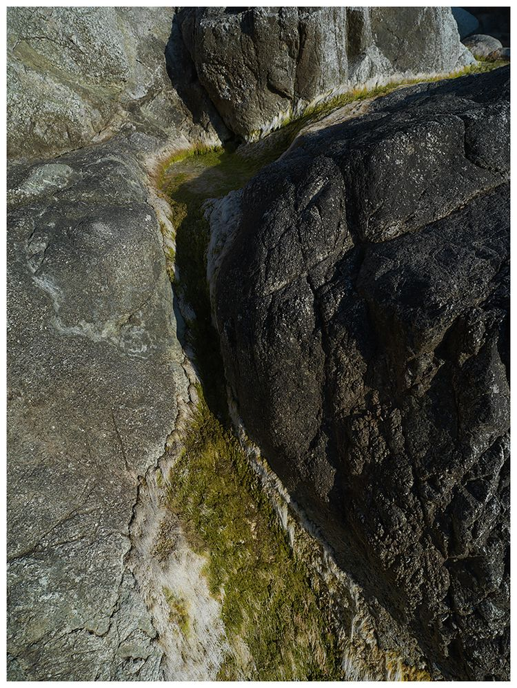 Veins Khris Rino - photography, landscape - khrisrino | ello
