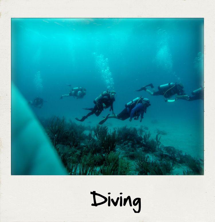 diving - travel, explore - ellephoto   ello