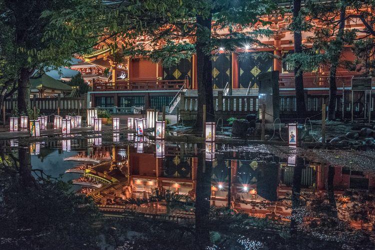 Asakusa garden lantern Festival - yoshirou | ello