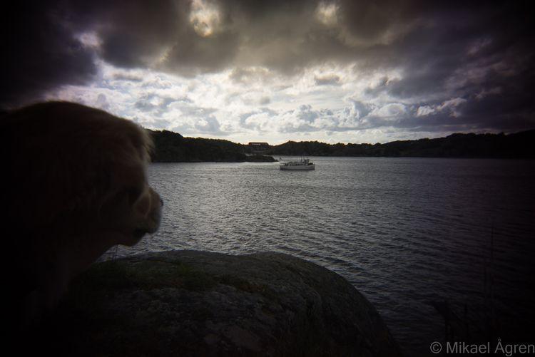 Dog Boat - sweden, westcoast, holga - mikael_agren_photography | ello
