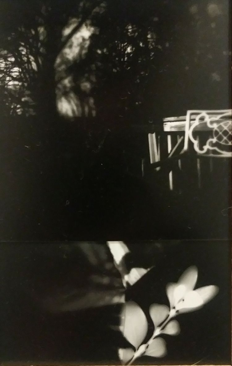 ghosts - naturephotography, nature - graz-a | ello