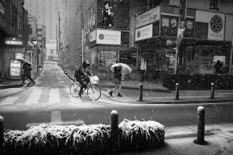 Shinjuku, Tokyo, Japan, snow#street - nickpitsas | ello