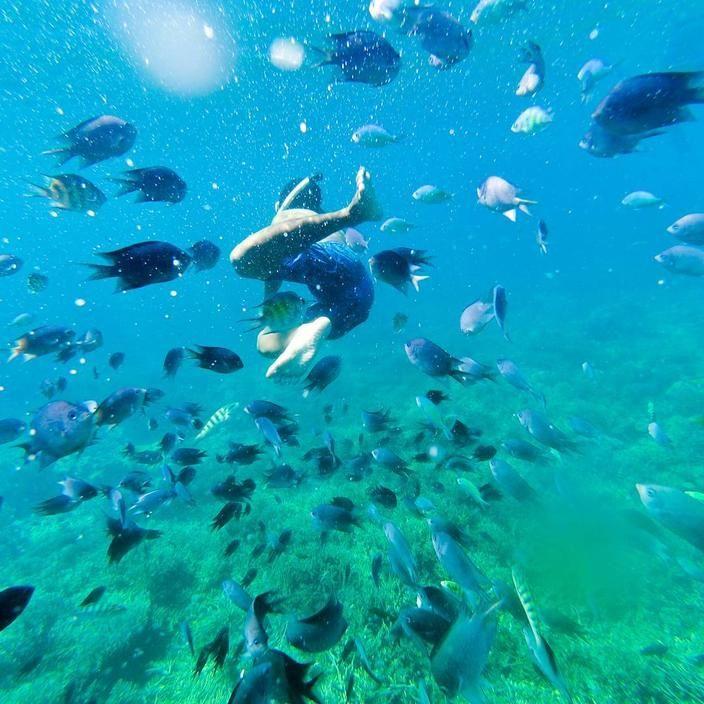 Travel Blogger Indonesia   - pulaukomodotrip   ello