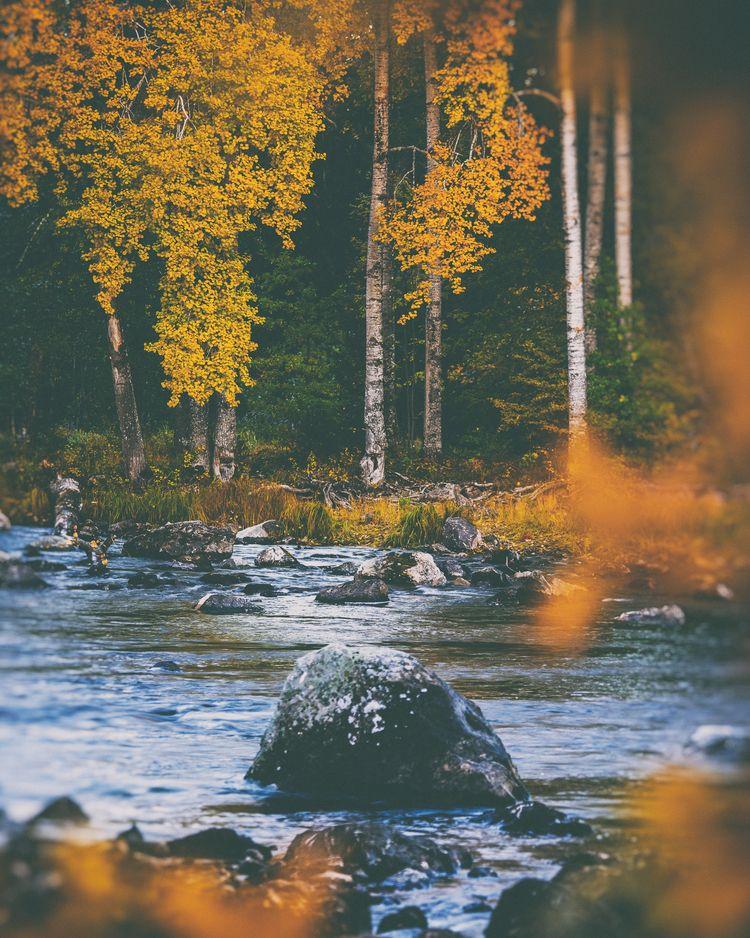 autumn colors - water, nature, natureart - peter_skoglund | ello