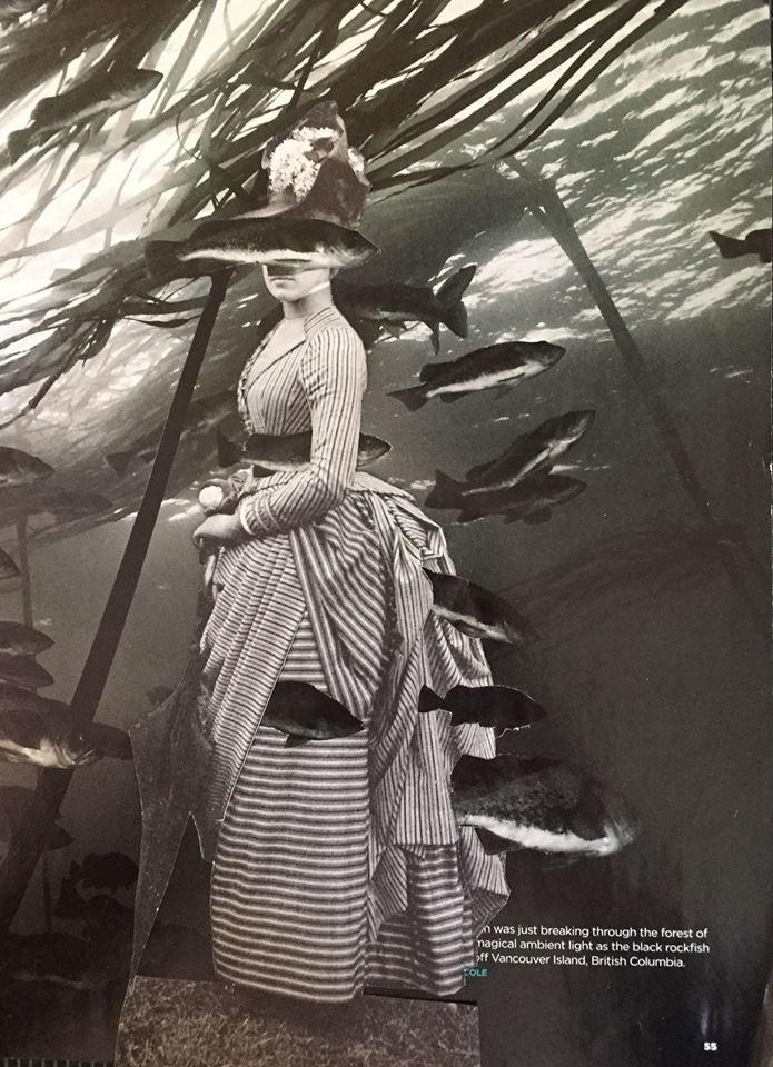 Fishy - collage paper - surrealism - deborahstevensonartist | ello