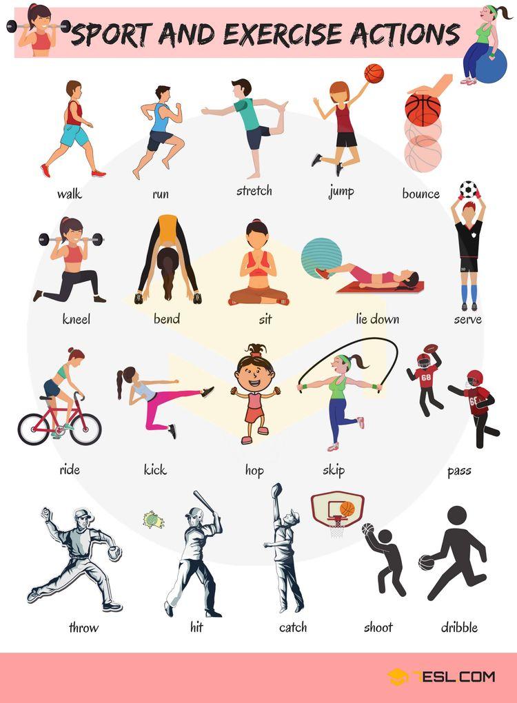 🕺 Learn Sport Exercise Verbs En - booksmania   ello