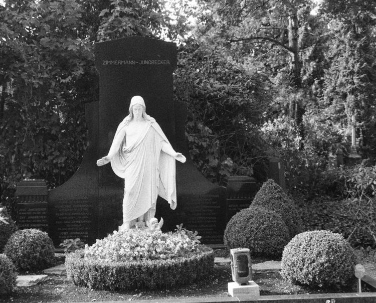 Westfriedhof II 09/2018 XXII Ca - walter_ac | ello