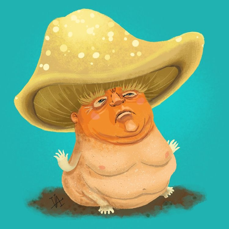 Trump, mushroom, illustration - vawalker   ello
