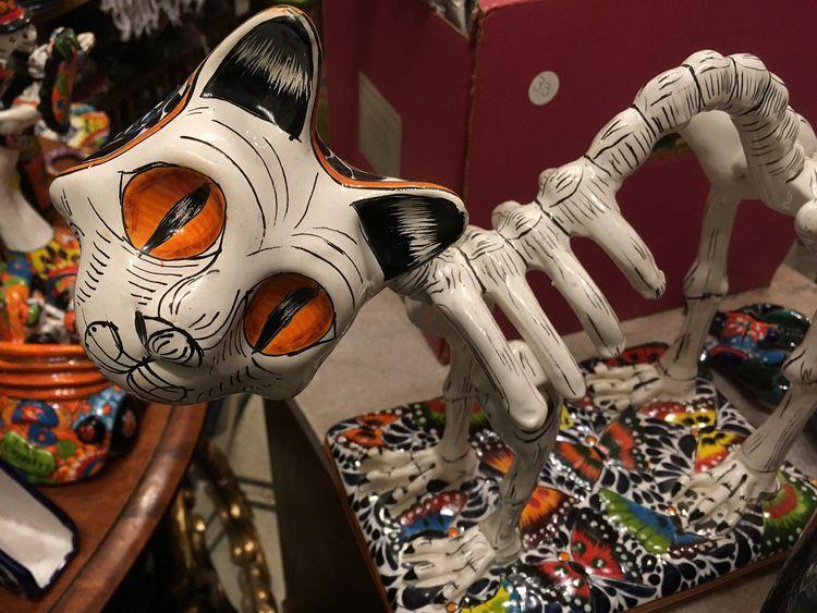 1434. Halloween approaching, ti - moosedixon | ello
