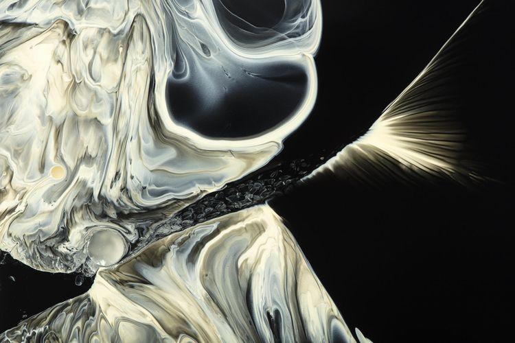 Petri Dish Project - Magic Leap - jddoria | ello