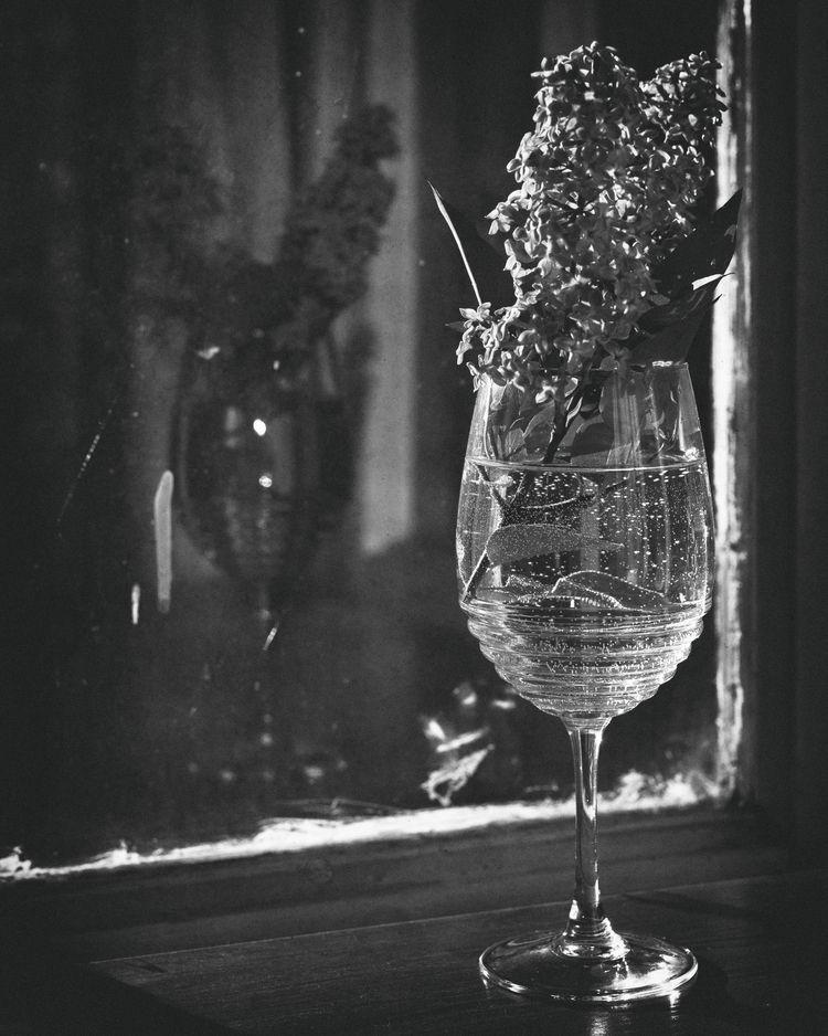 stilllife, glass, water, blackandwhite - sara_bul | ello