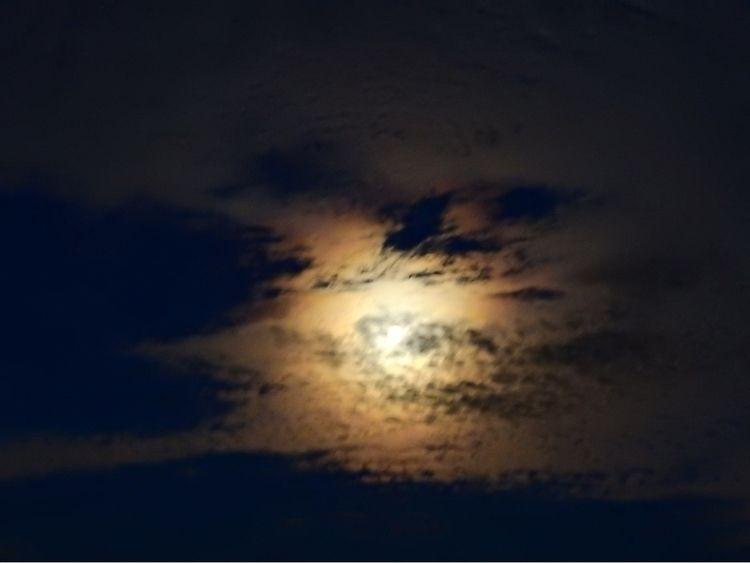 October Moon - gwensutton | ello