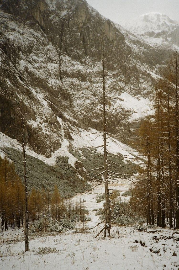 Snowy fall scene Dullwitz, Aust - matthiasschlaipfer | ello