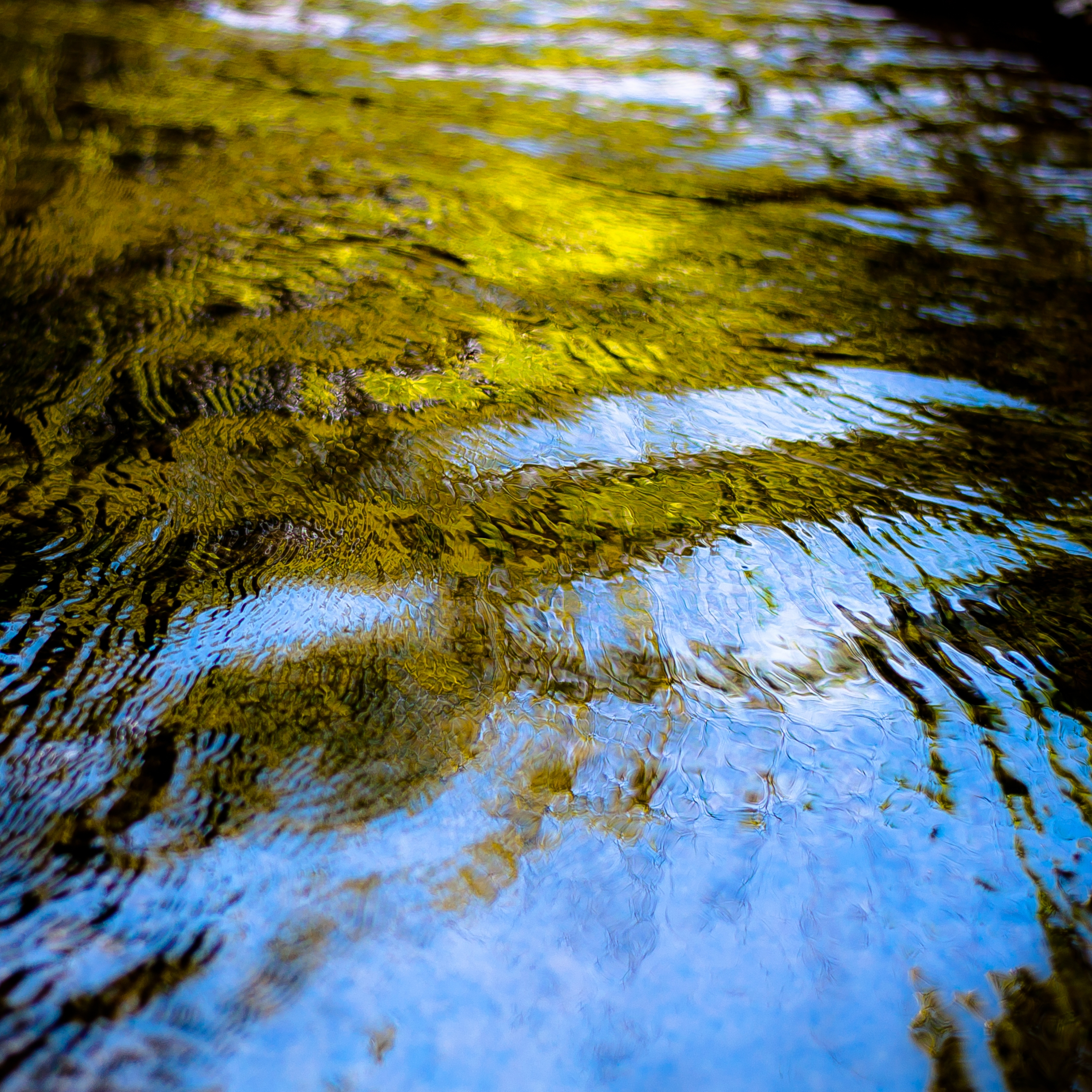 River Flow 055 - noahbw | ello