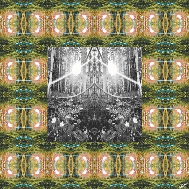 Aspen Trees Topher Straus Print - bitfactory | ello