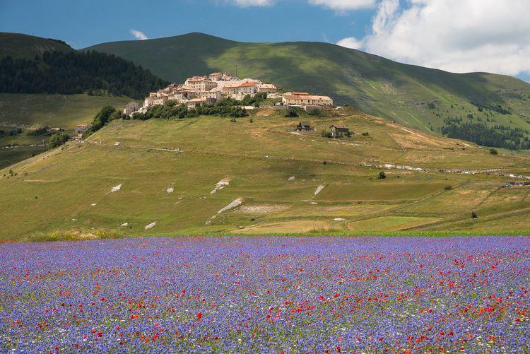 Castelluccio, Umbria, Italy 201 - toni_ertl | ello
