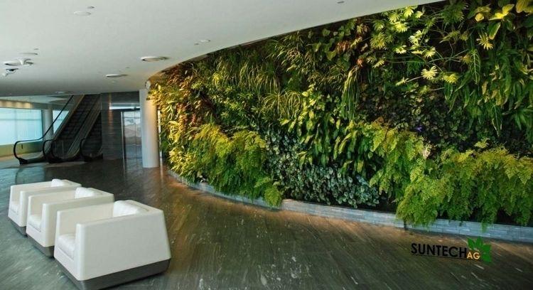 Indoor Plants – Real Friend! Ut - airgrow | ello