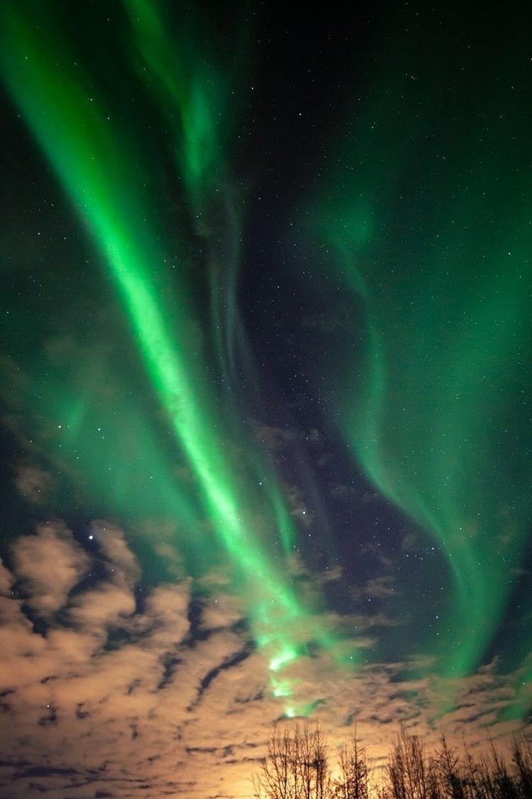 Captured Northern Lights North  - tacosteev | ello
