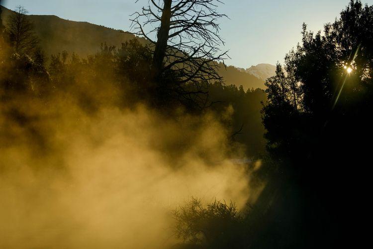 Polvo mágico en Traful  - traful - karenmorgan | ello