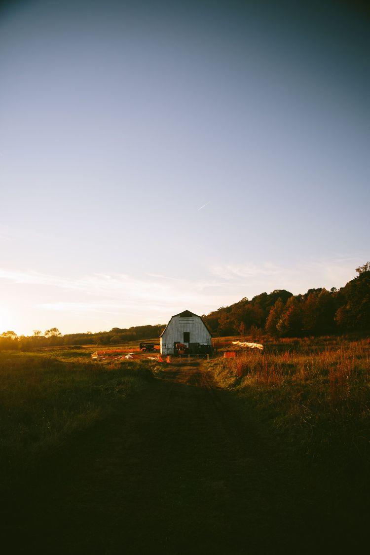 Farm, Georgia - bernardalexander | ello