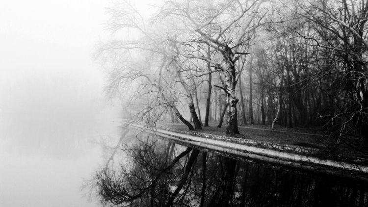 Black white nature photography - szilvidsgn | ello