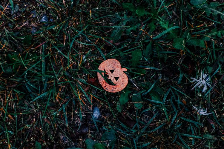 Happy (slightly belated) Hallow - leafinglife | ello