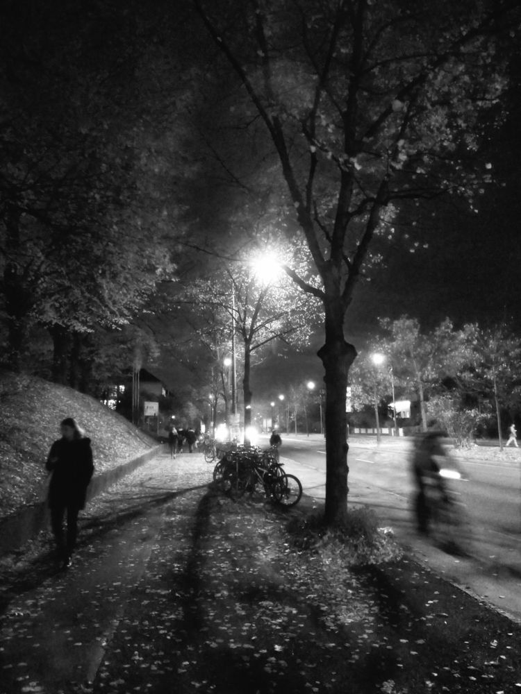 evening, autumn, city, urban - claudio_g_c | ello