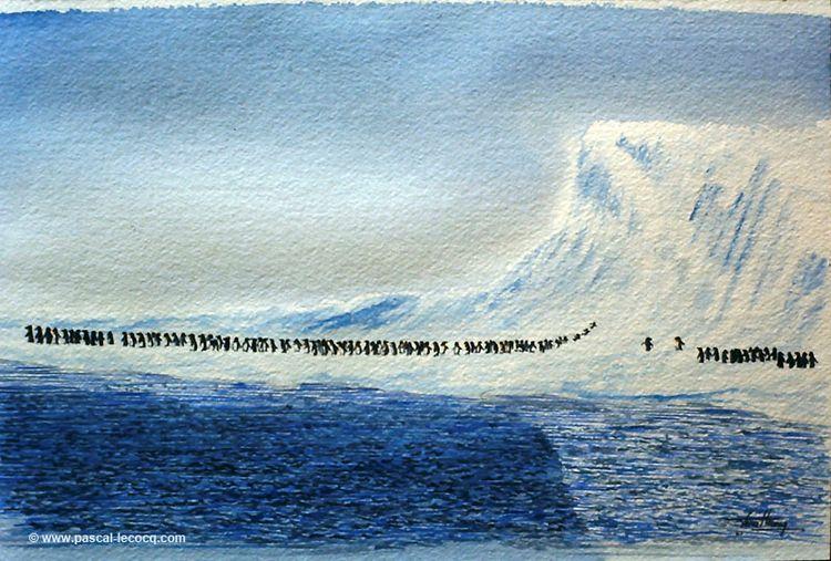 CENT MANCHOTS - 101 penguins Wa - bluepainter | ello