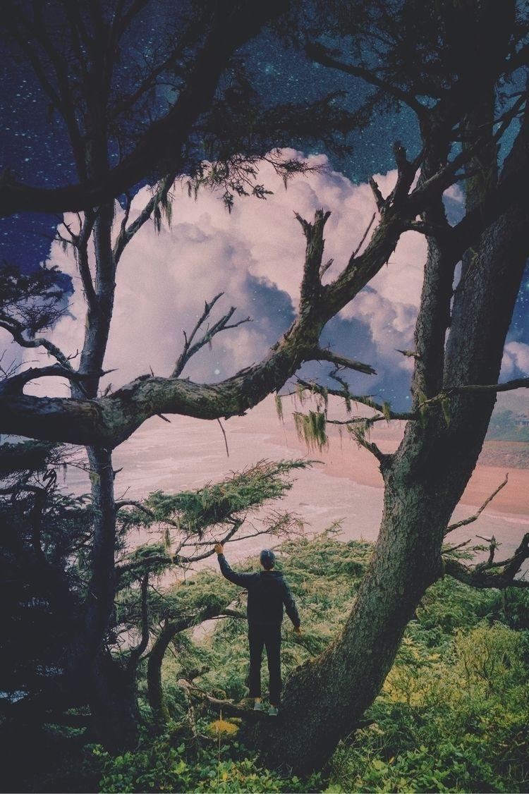 ⠀ 夢幻 | Ð ᖇ Σ Å М СО̺Н̤͙̤̙͚ - visual_creatorz - nekitperes | ello