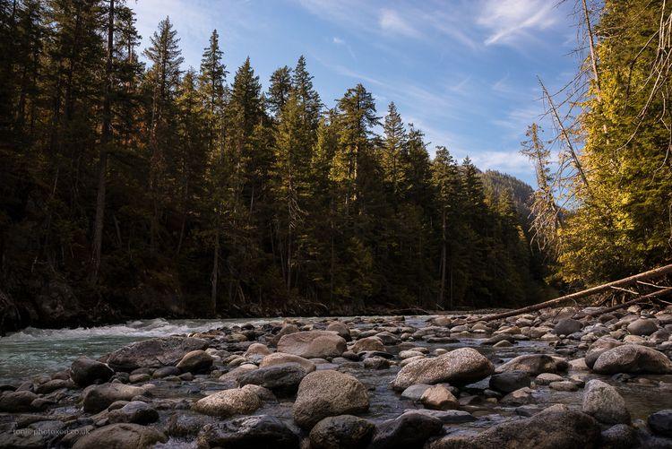 Green River. Pemberton BC, Cana - toni_ertl | ello