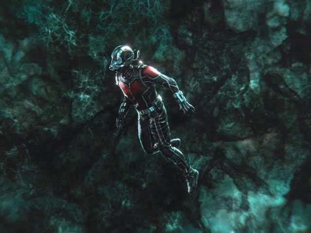 Ant-Man Wasp (2018 - moviedisplay | ello