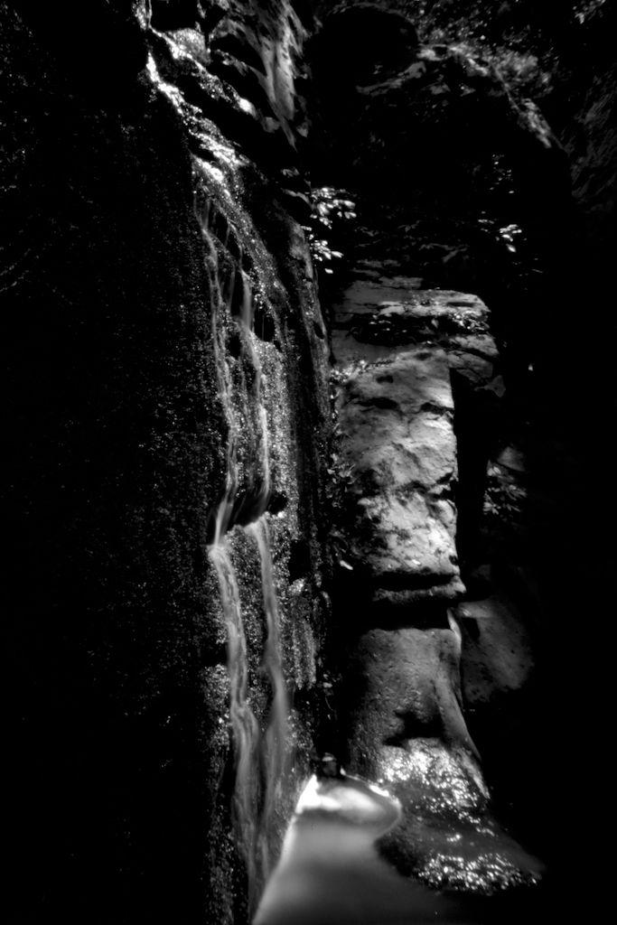 Jummalung ...platypus rock, Mac - peterdegraaff | ello