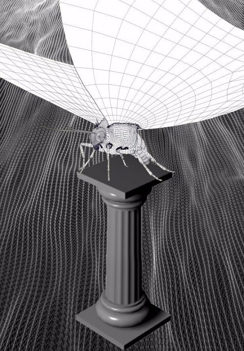 digital, visual, 3d, wireframe - mosquitophobic | ello