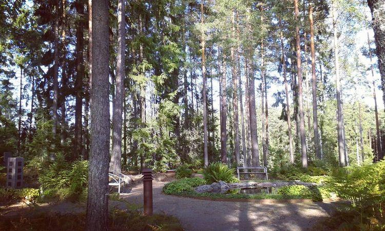 Askgravplatsen med stor prydnad - skogskyrkogardar | ello